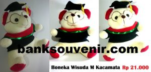 Bear Wisuda Kacamata