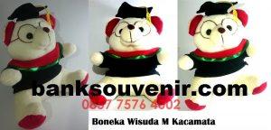 Souvenir Boneka Wisuda Kacamata