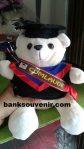 Bear Wisuda S