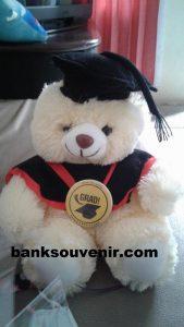 Bear Wisuda M Cream