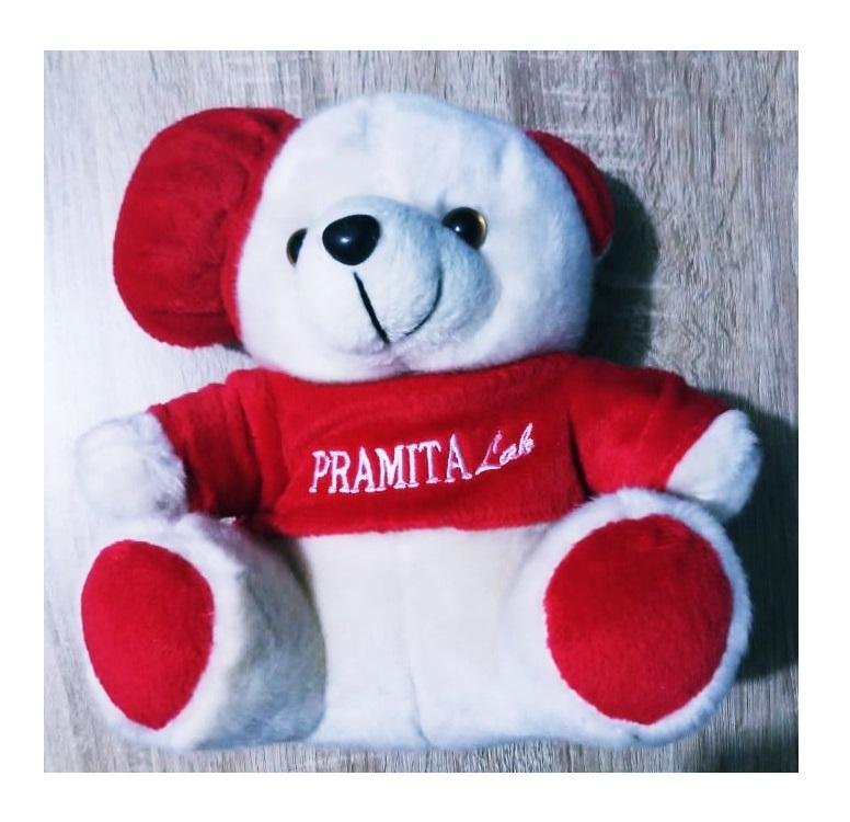 Produsen Souvenir Boneka Terlengkap Paling Murah